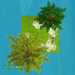 Zuza-Ritt-mesh-landscape-mesh-trees-SQUARE-02