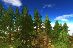 21strom-Spruce-tree01