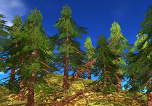 21strom-Spruce-tree02