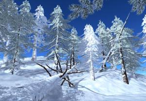 21strom-Spruce-tree03
