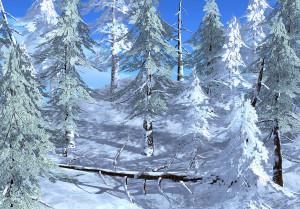 21strom-Spruce-tree04