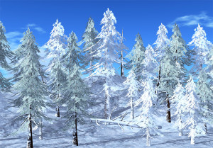 21strom-Spruce-tree05