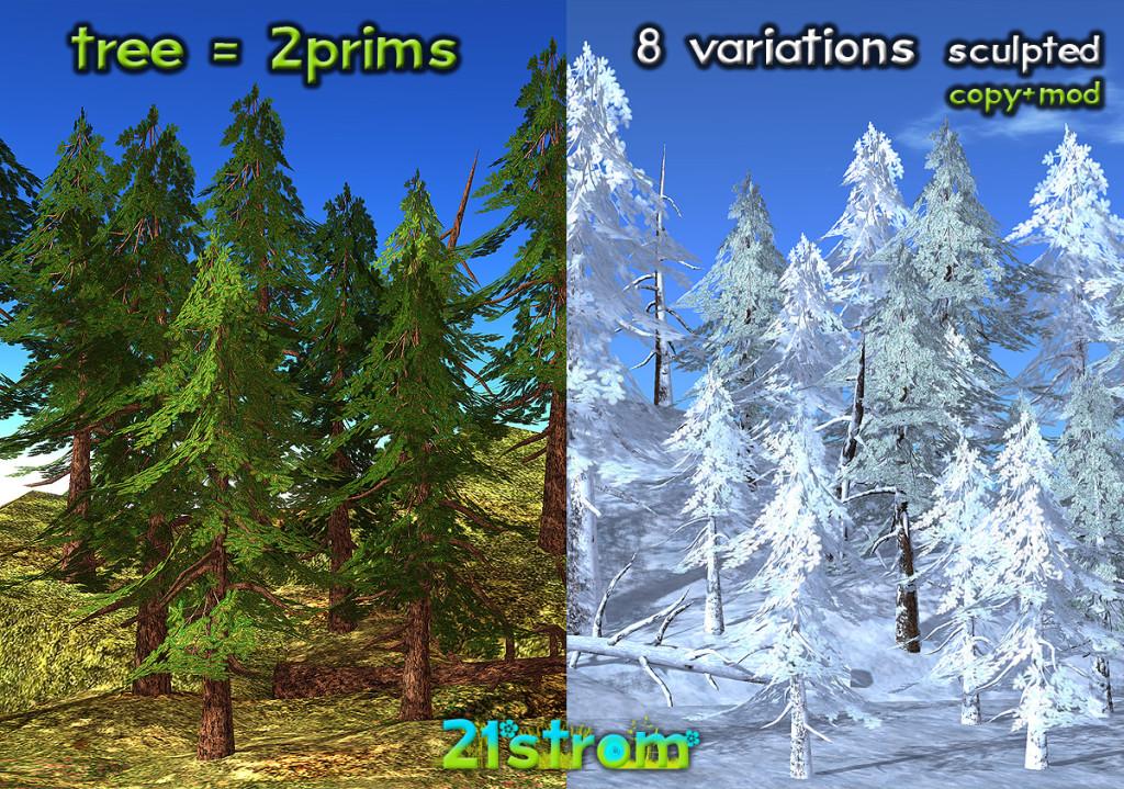21strom-Spruce-treeMAIN
