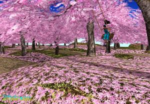 21strom-cherry-blossom-park04