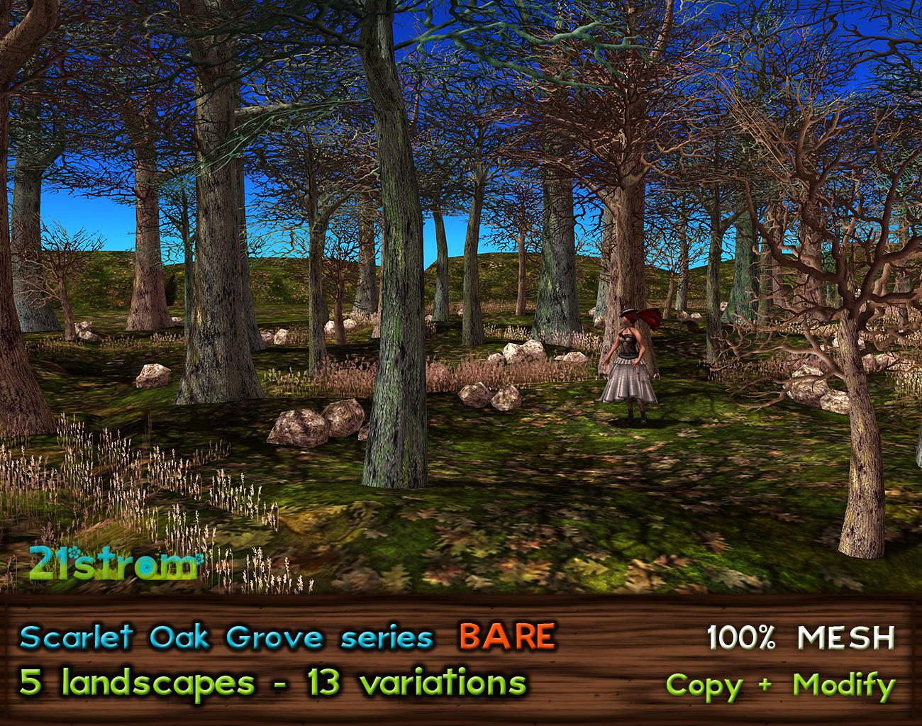 Scarlet Oak Grove Bare