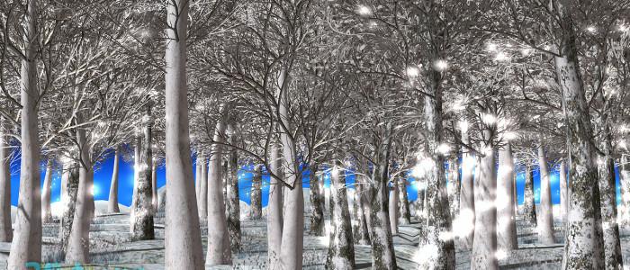 WinterOakForest00