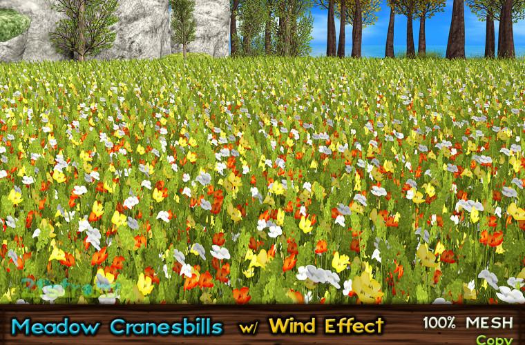 CRANEBILLS-Orangel
